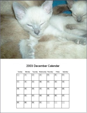 Calendar Making Software Helping You Make Your Own Calendars. 9.