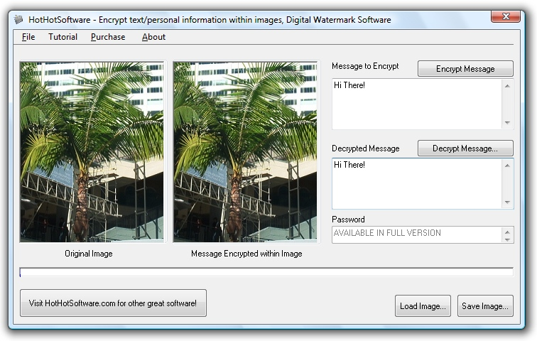 Encrypt your text within image files! Digital watermarking softw